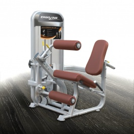 HG9019 LEG EXTENSION & LEG CURL MACHINE